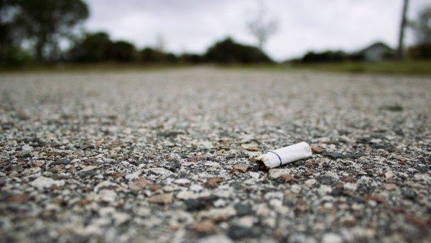 Butt study - ontario contraband tobacco