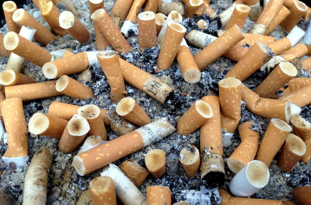 convenience store test on contraband tobacco